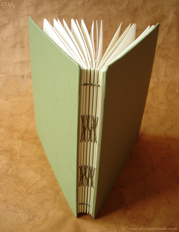 Álbum concertina verde